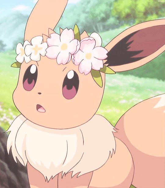 Serena S Newly Caught Eevee Pokemon Pinterest Pok 233 Mon Anime And Digimon