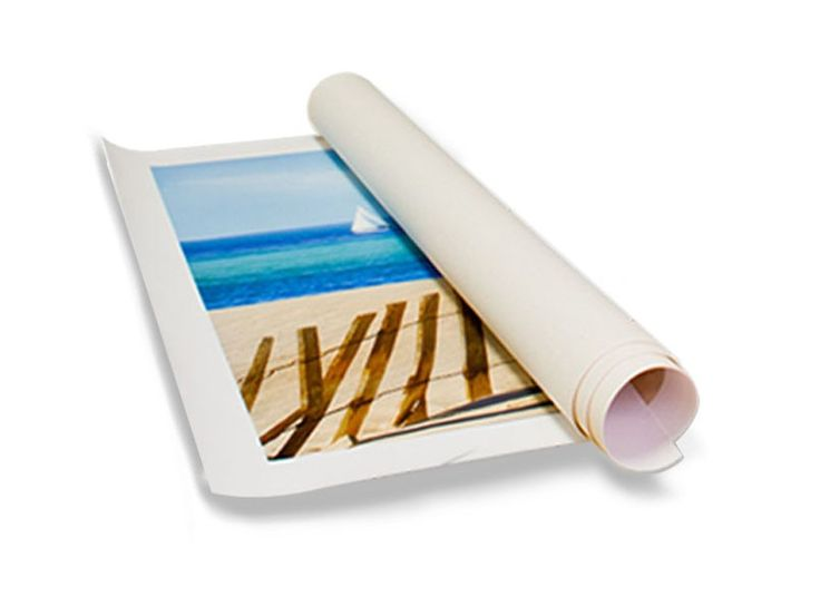 Canvas Roll - Trade Show Banners - Banners