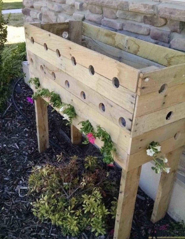 Sie Bohrt 19 Locher In Eine Holzkiste 5 Monate Spater Fallt Der Kiefer Bohrt Fallt Holzkiste Kie Pallet Planter Box Cute Garden Ideas Diy Planter Box