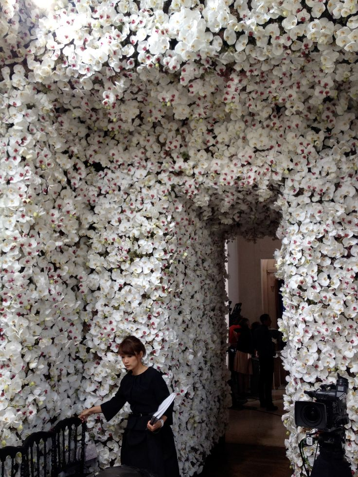 wall of white blooms