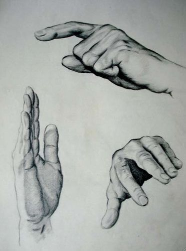 Pencil Drawing - hands