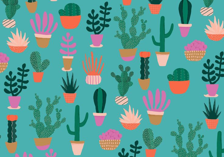 Cacti print by Naomi Wilkinson
