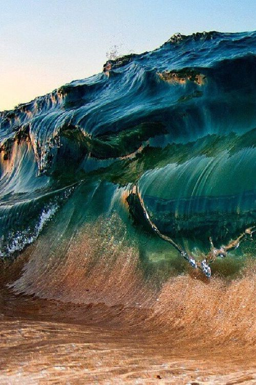 WAVE...
