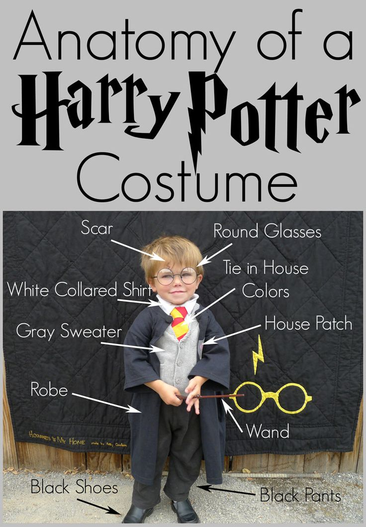 Image from http://1.bp.blogspot.com/-du2yAQDBdog/VCUIpGMqESI/AAAAAAAAS1w/MmqkMpT1nt0/s1600/Anatomy-of-Harry-Potter-Cos.jpg.