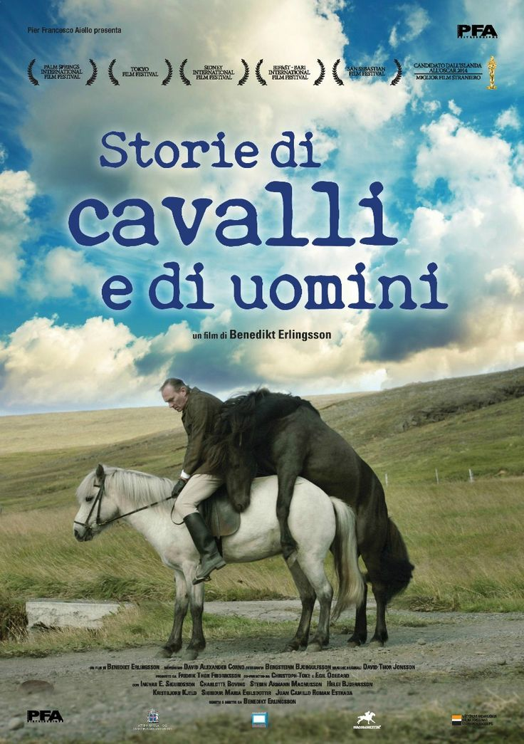 Storie di cavalli e di uomini, il film di Benedikt Erlingsson, dal 19 novebre al cinema.