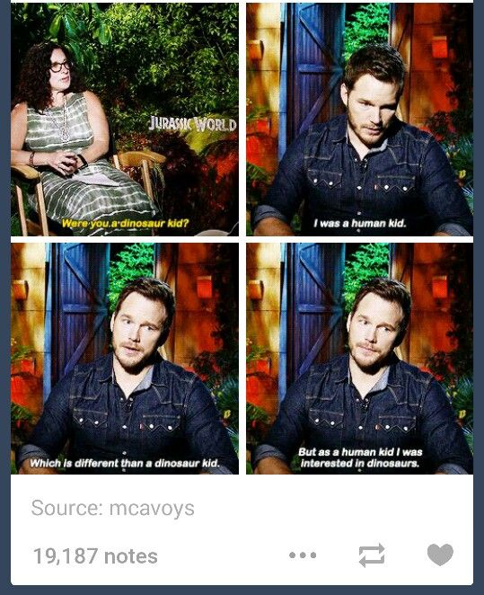 Chris Pratt / Jurassic World