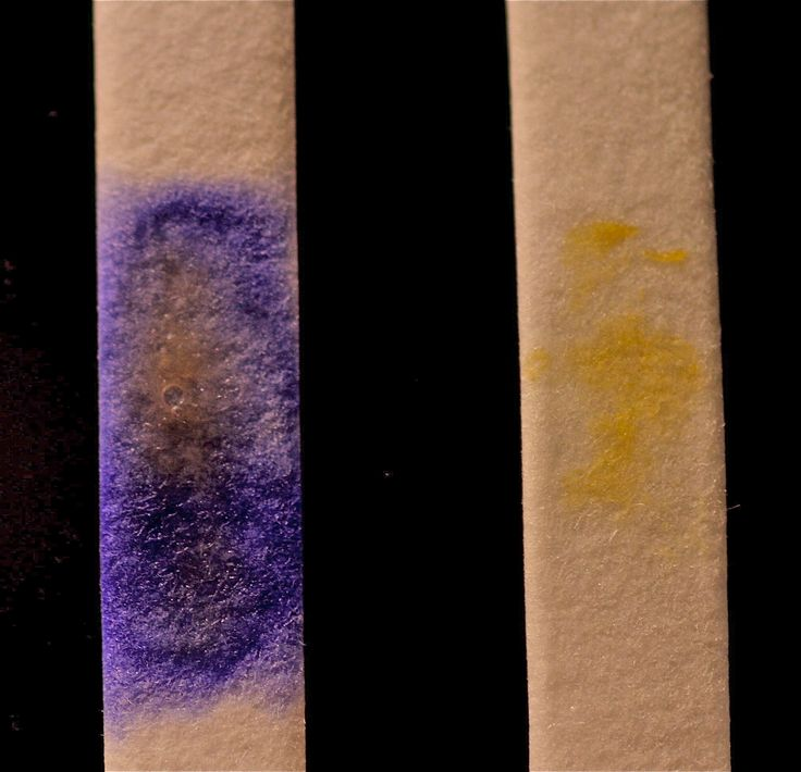 The oxidase test is performed using a reducing agent to detect bacteria's ability to produce cytochrome c oxidase, an enzyme in the electron transport chain. The reducing agent  (TMPD)) changes or produces a purple color as it become oxidized. Pseudomoonas aeruginosa: pruple color formed indicating the presence of cytochrome c oxidase on the oxidase strip impregnated with TMPD. Escherichia coli: no purple color formed indicating there is no cytochrome c oxidase.