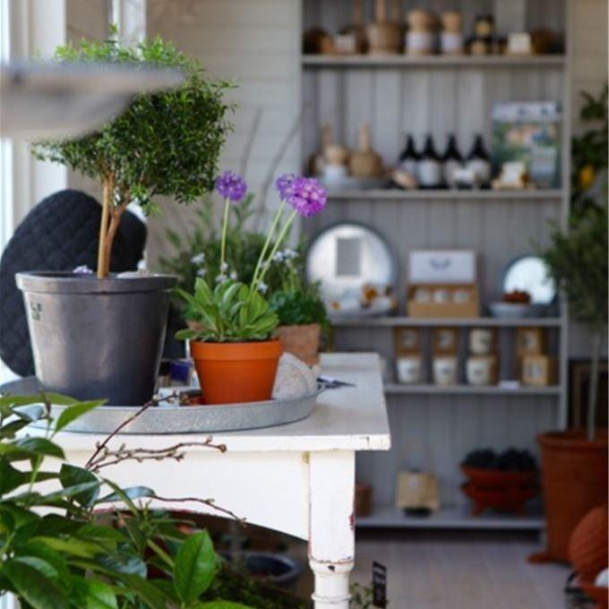 Rinkaby. Rörbäckens trädgård. En butik för alla som älskar livet i trädgården. Det spelar ingen roll om du odlar i en enda kruka i köksfönstret, på balkong i stan, i några pallkrag