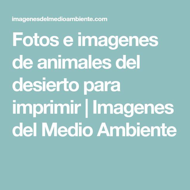Fotos e imagenes de animales del desierto para imprimir   Imagenes del Medio Ambiente