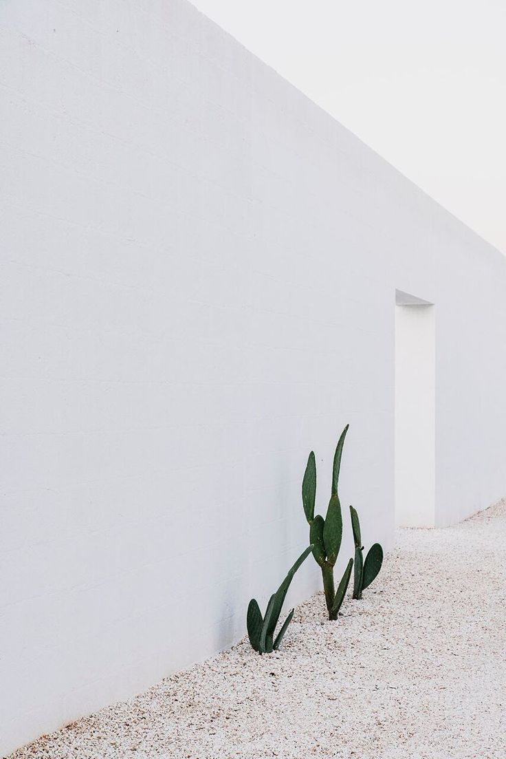 A Modern Masseria in Puglia with Traditional Influences: Remodelista