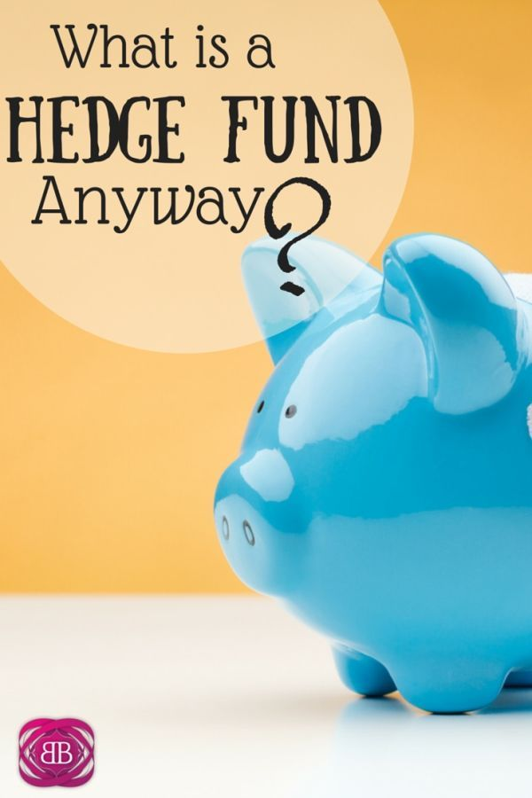 What is a hedge fund? One of my goals for the blog is to take hard to understand topics, and break them down! So today, we're talking hedge funds! http://www.budgetblonde.com/2015/02/26/what-is-a-hedge-fund/