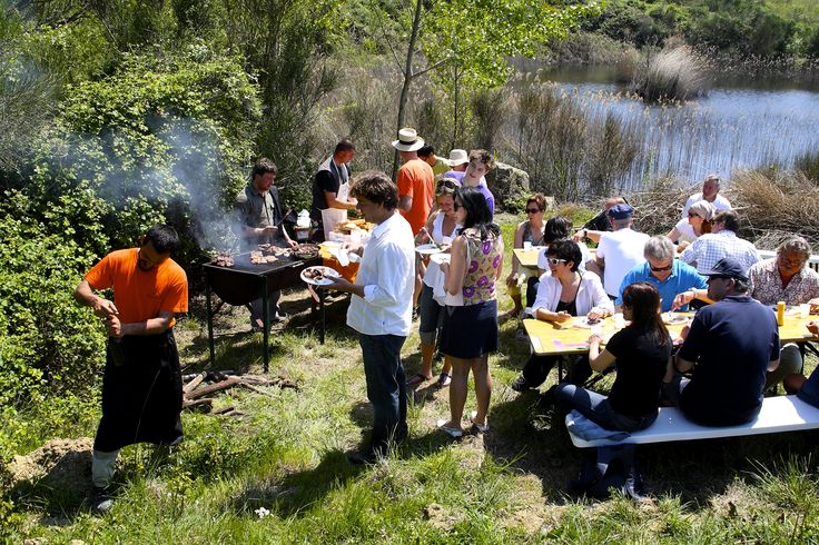 BARBECUE IN VINEYARDS
