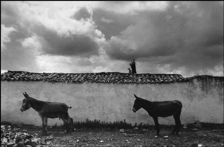 Jean Gaumy. SPAIN. Estramadure region. Village of Deleitosa.  This Spanish village was photographed by W. Eugene SMITH in 1950. After the publication of his story in Life magazine, the adverse American public opinion manifested against Franco. Thirty years later, in 1982, the village still remembers the work of W. Eugene SMITH.