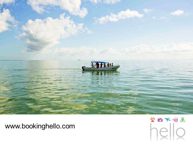 EL MEJOR ALL INCLUSIVE AL CARIBE. Si decides visitar Holbox durante tus vacaciones en el Caribe mexicano, aprovecha la oportunidad de hacer pesca con tus amigos. Los lugareños pueden llevarte a dar un recorrido por mar abierto para hacer pesca de fondo, deportiva, mini pesca e incluso, pesca master. En Booking Hello te recordamos que al adquirir nuestros pack all inclusive, tendrás la oportunidad de vivir viajes fantásticos. #BeHello