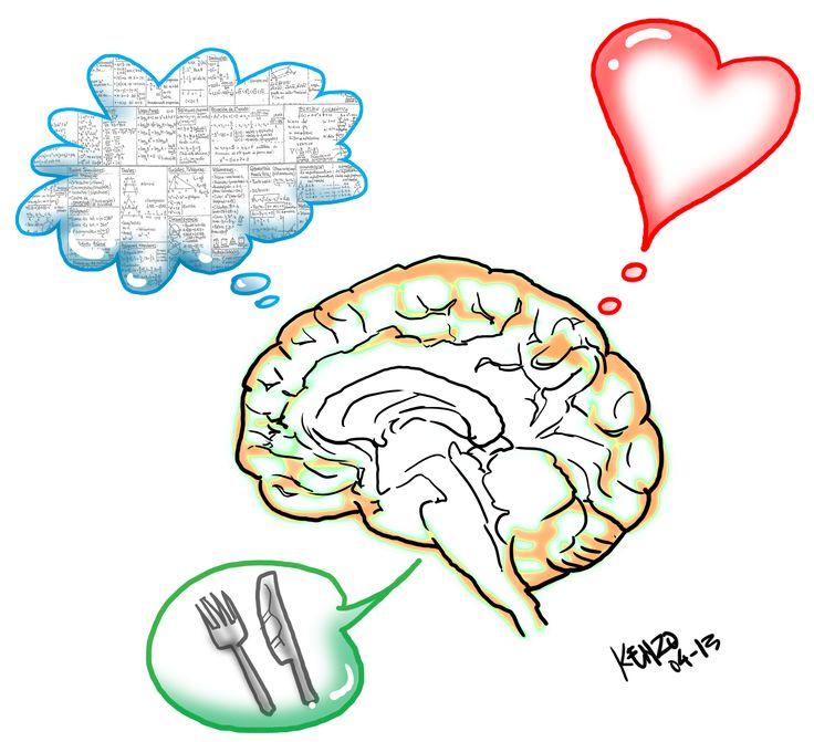 triune brain - Rapunga Google