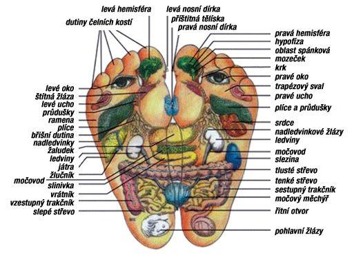 salon MENEL Pardubice | Bodystyling | akupunkturní body chodidel - stimulace reflexních bodů