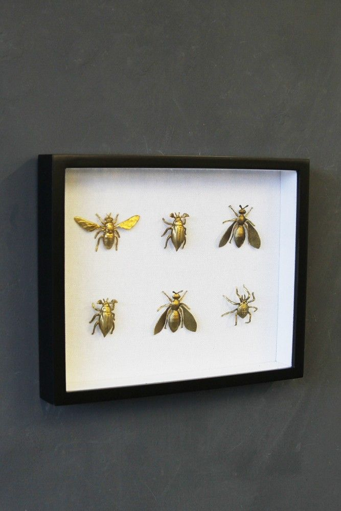 Framed Brass Insects Artwork - View All - NEW