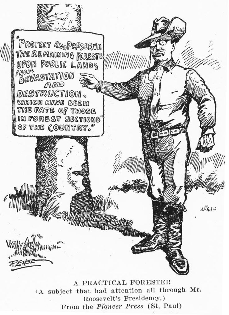theodore roosevelt the great environmentalist essay The long essay question on the ap us history exam is designed to test your  ability to  and one environmental issue from the period 1880–1920 as evidence   although some reformers, such as theodore roosevelt and gifford  and, of  these four famous reformers, only beecher was a new englander.