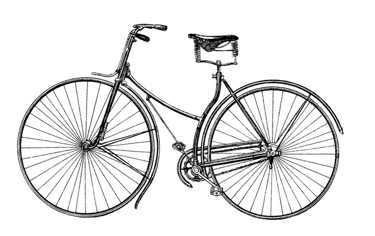 Free Vector Download - Antique Bicycle