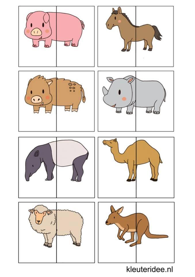 (2017-03) Hele/halve dyr ~ pdffil med i alt 40 delte dyr