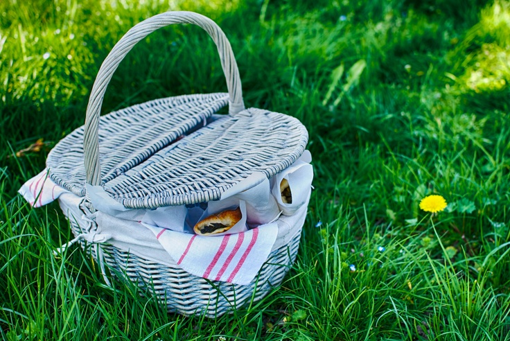 Spring picnic...