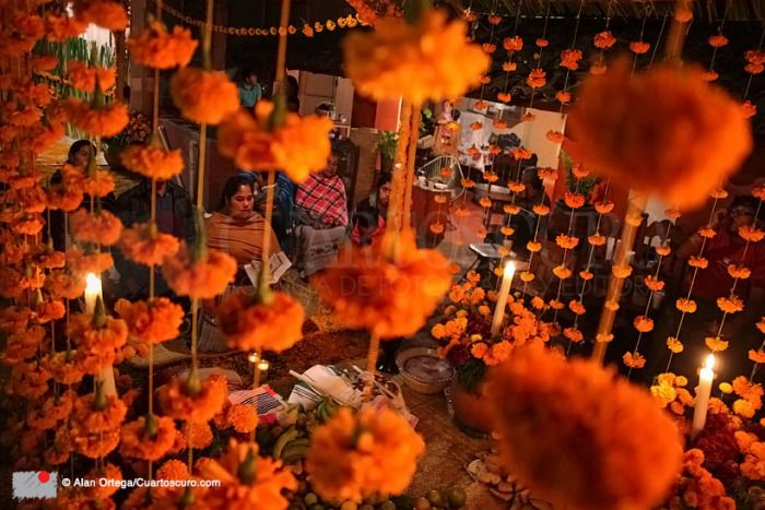 Santa Fe de la Laguna, Michoacán, 2 de noviembre, 2014 - Los pobladores que han perdido familiares recientemente en está población situada en la ribera del Lago de Pátzcuaro, festejaron el Día de Muertos arreglando altares dentro de las casas de los recién fallecidos, con cempasúchil y veladoras. visitantes. Foto: © Alan Ortega / Cuartoscuro Copyright ©
