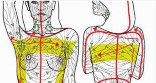 Découvrez les techniques les plus pertinentes pour drainer naturellement votre système lymphatique.
