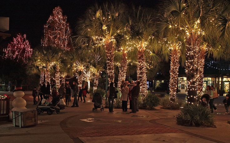 Each Year, Riverbanks Zoo U0026 Garden Holds Lights Before Christmas. With Over  1 Million