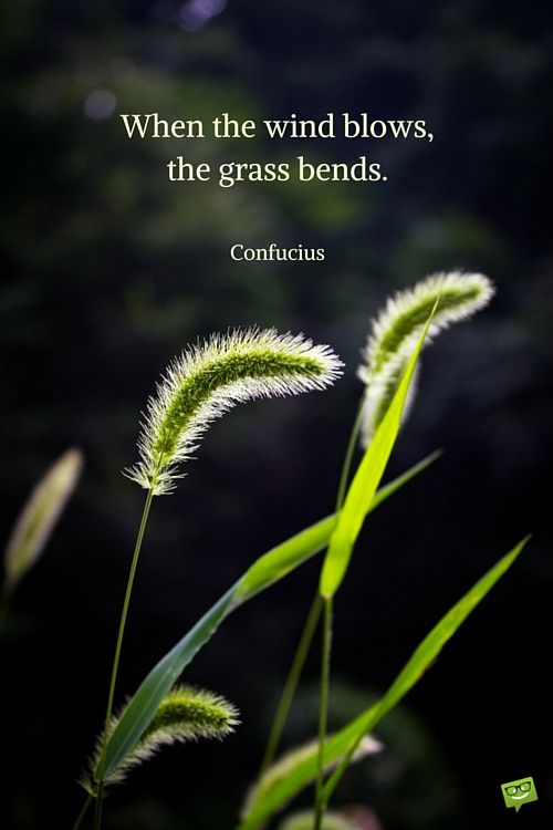When the wind blows,the grass bends. Confucius
