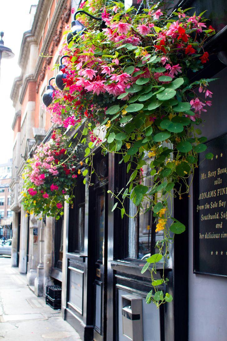 Flower Covered Door
