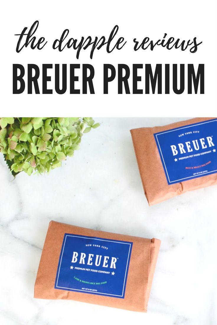 Breuer Premium Dog Food Pinned by www.thedapple.com | Design | Dog Treat | Dogs | Dog Treats | Dog Training | Raising a Puppy | Pretty Dog Treats | Funny Dog Treats | Best Dog Treats |  Dog Treat DIY | Healthy Dog Treats | Homemade Dog Treats | Dog Bakery | Natural Dog Treats | Organic Dog Treats | Dog Food |