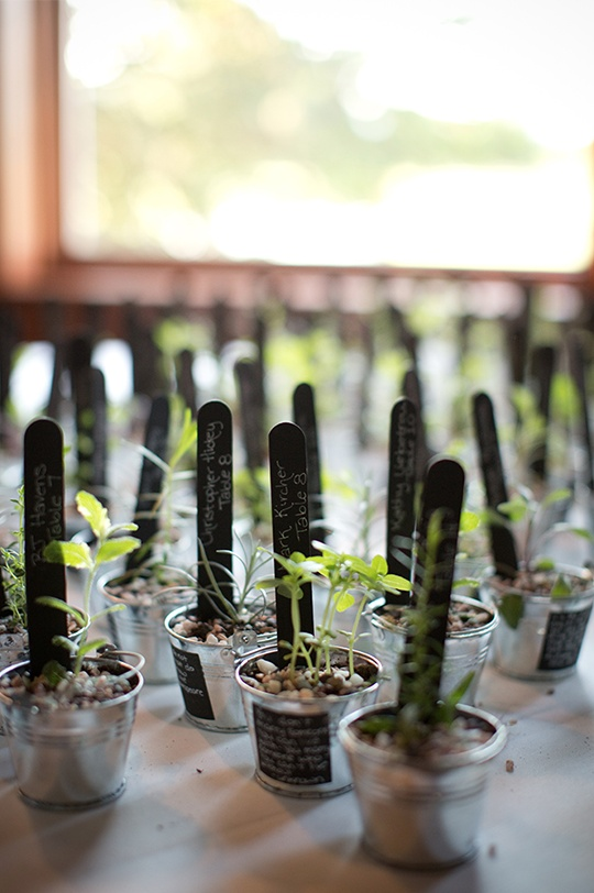 Seedling escort cards/favors - very cool!  Double duty and folks go home and plant them and remember your day!