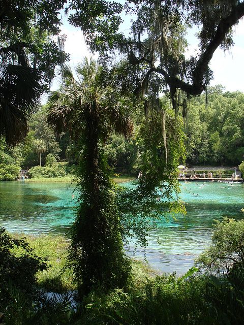 Rainbow River State Park, Florida.  Love taking pictures here ... so many memories are made everytime we go!