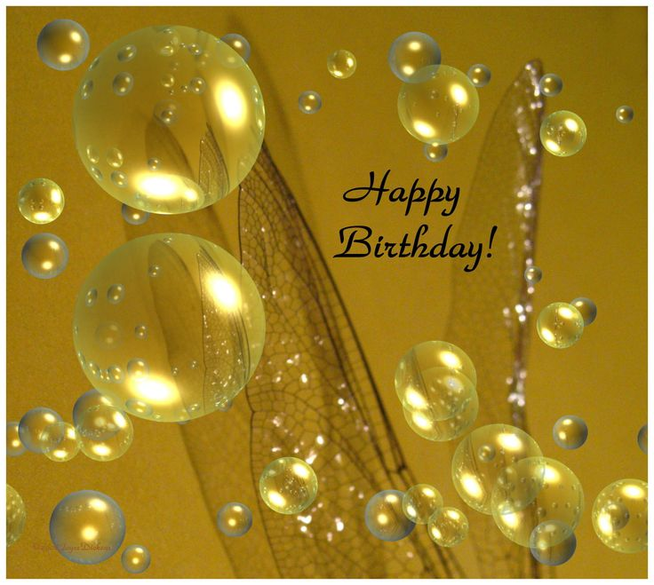 happy birthday nature images - Google Search
