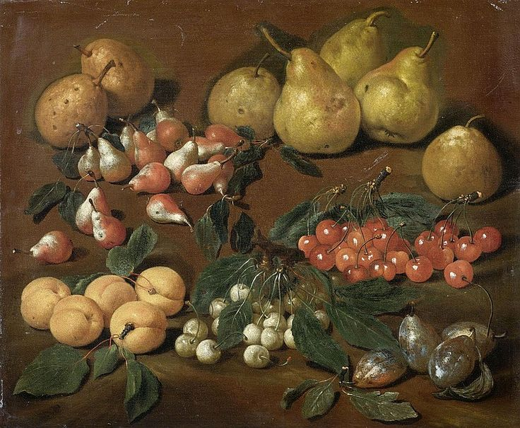 Bartolomeo Bimbi (1648-1729) — Fruits: Pears, Apricots, Cherries and Plums. (750×617)