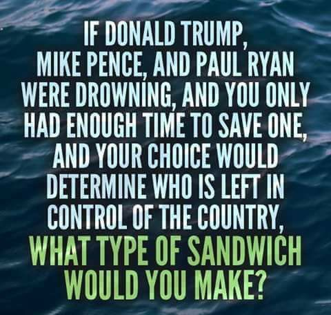 If Donald Trump, Mike Pence, and Paul Ryan were drowning, and you only had enough time to save one, and your choice would determine who is left in control of the country, what type of sandwich would you make?Grilled cheese, I think.