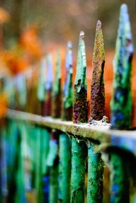 Fantastic colorsGardens Fence, Picket Fence, Green, Colors, Beautiful, Nature Design, Gates, Rust, Male