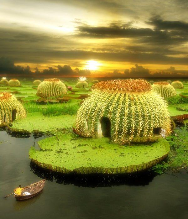 Unique houses made to resemble Echinocactus grusonii - Golden barrel cactus.