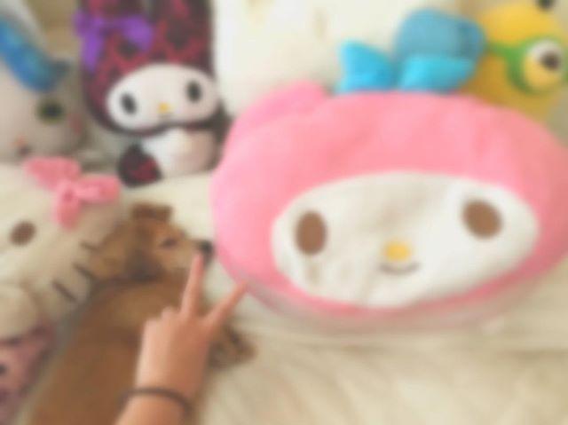 今日も一緒に寝るよん😪💤 . #愛犬 #チワックス #チワワ #ミニチュアダックス  #ミックス犬 #雑種 #ベタ惚れ #かわいい #寝顔 #ベット #人形だらけ #マイメロ  #キティちゃん  #コマさん #ミニオン