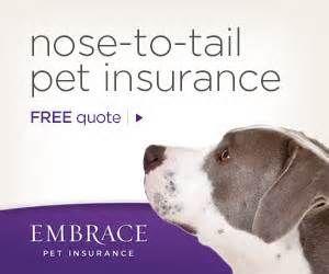 Embrace Pet Insurance - Should I get pet insurance? YES! http://peoplelovinganimals.com/embrace-pet-insurance-should-i-get-pet-insurance-the-answer-is-yes