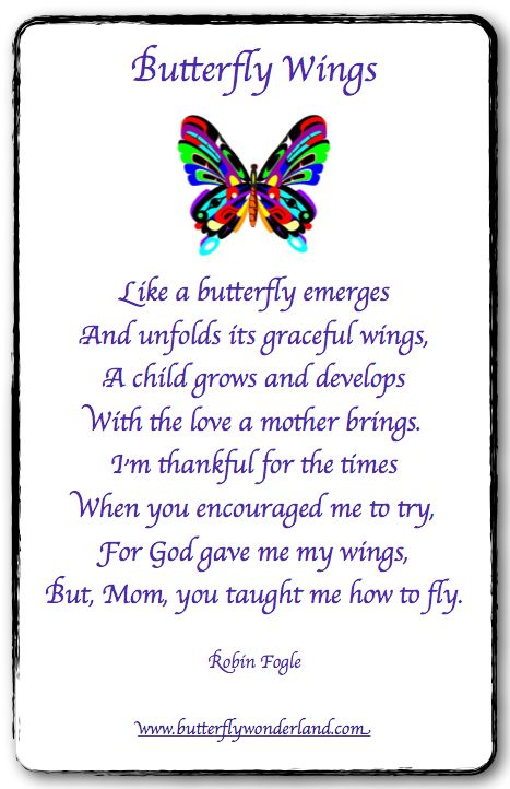 Butterfly Wings By Robin Fogle Butterfly Poems Amp Quotes