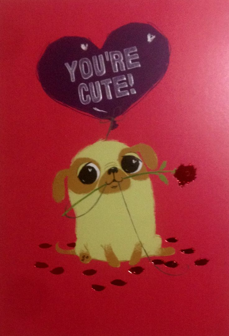 117 best Pug cards gift wrap gift bags images – Valentines Cards Uk