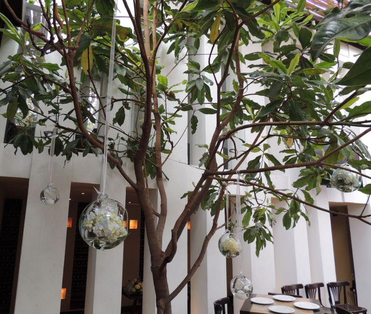 Bombonas con hortencias. Contáctanos para cotizar tu boda clientes@lapetala.com.  2159030 Bogotá.