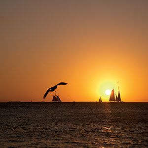Sun Catcher - Kicking Back in Key West - Coastal Living