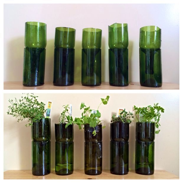 Upcycled Wine Bottles Into Indoor Herb Planters for Urban Gardening #reuse