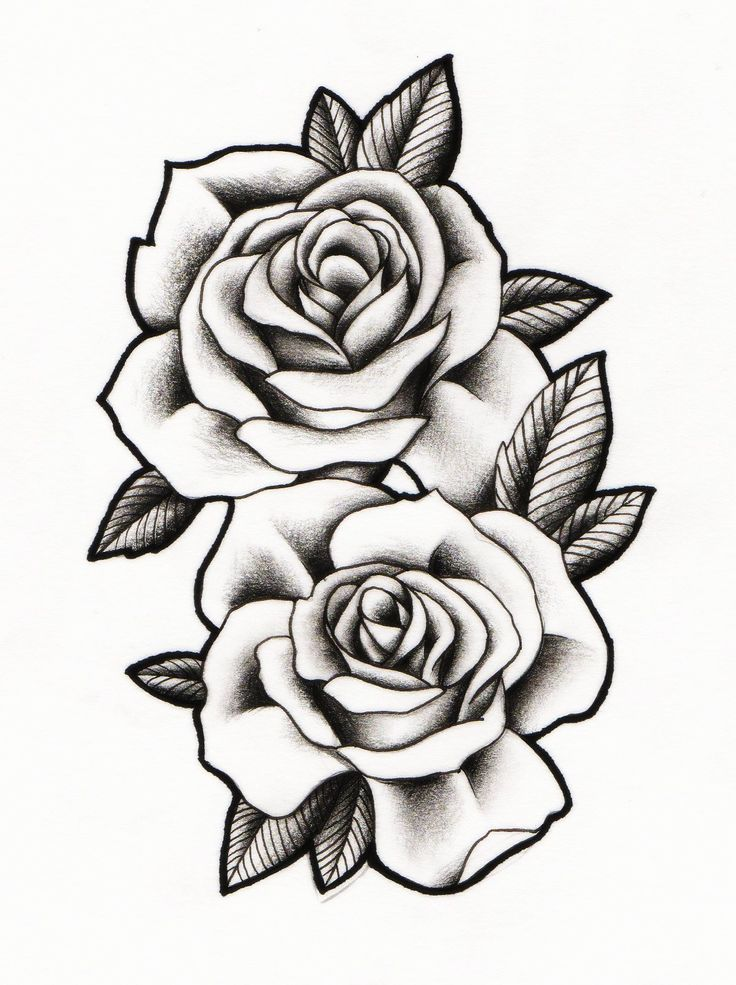 Best 25 two roses tattoo ideas on pinterest for Rose tattoo patterns