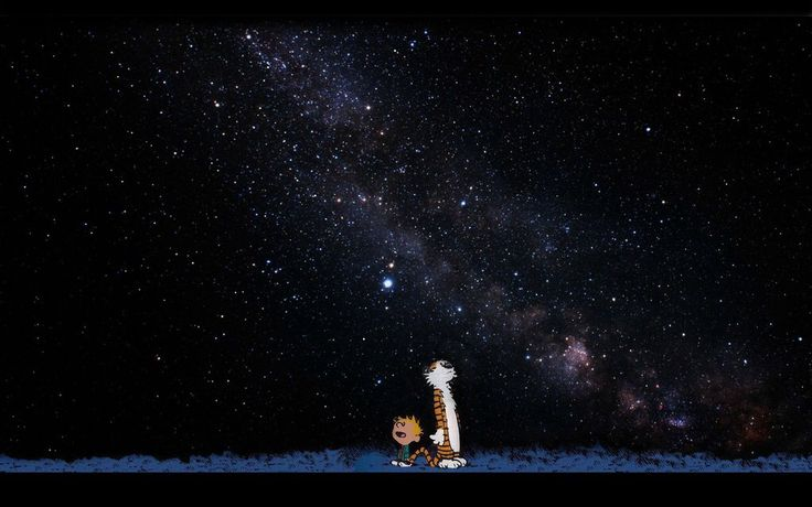 Calvin and Hobbes looking at the night sky