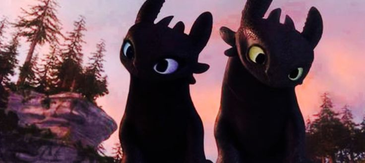 Me: *walking by* *sees nightfuries* O_O Toothless?!........KATIE?!?!?!? IS THAT YOU?!?! (@espinkate)