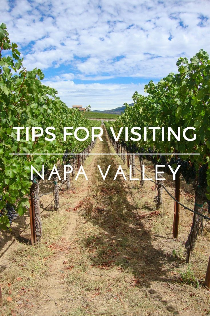 Tips for visiting California's Napa Valley- including the best wineries and how to taste like a pro!
