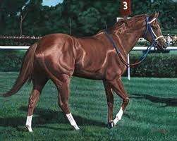 "Secretariat. ""Big Red"". Isn't he gorgeous?"